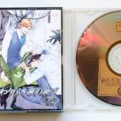 BLCD『終わりなき夜の果て』高価買取!